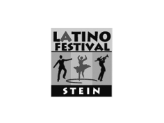 Latino Festival Stein